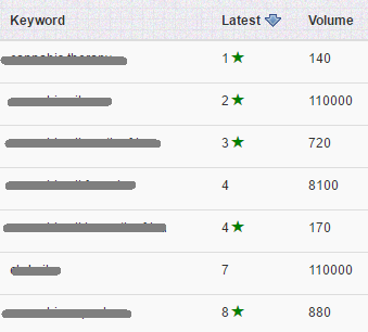 seo-cape-town-serp-results